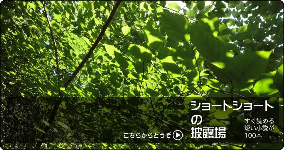 ssh_bn2011.png